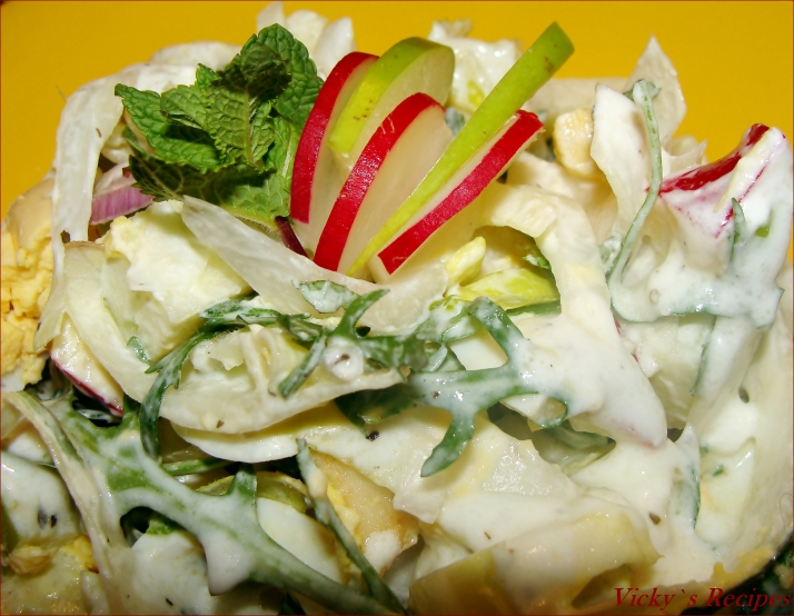 Salata andive 1